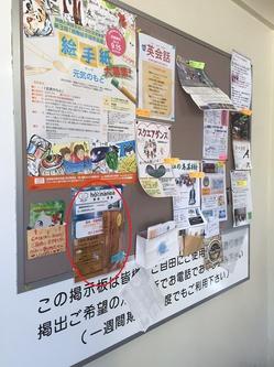 チラシ湘南江ノ島駅.jpg